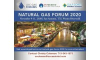 Natural Gas Forum 2020