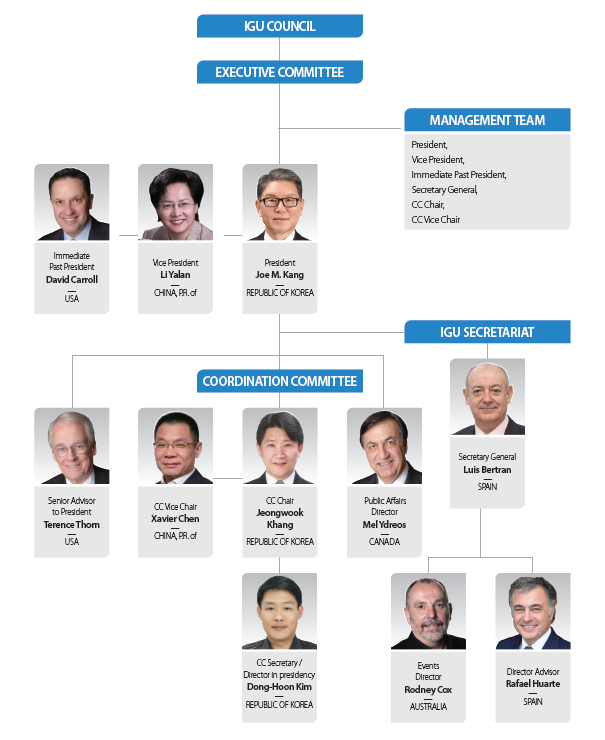 IGU Org Chart-Korean IGU Presidency