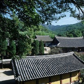 The temple means Temple of Paulownia Blossoms, surrounded by beautiful nature and holds many precious cultural objects